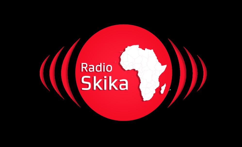Skika Logo