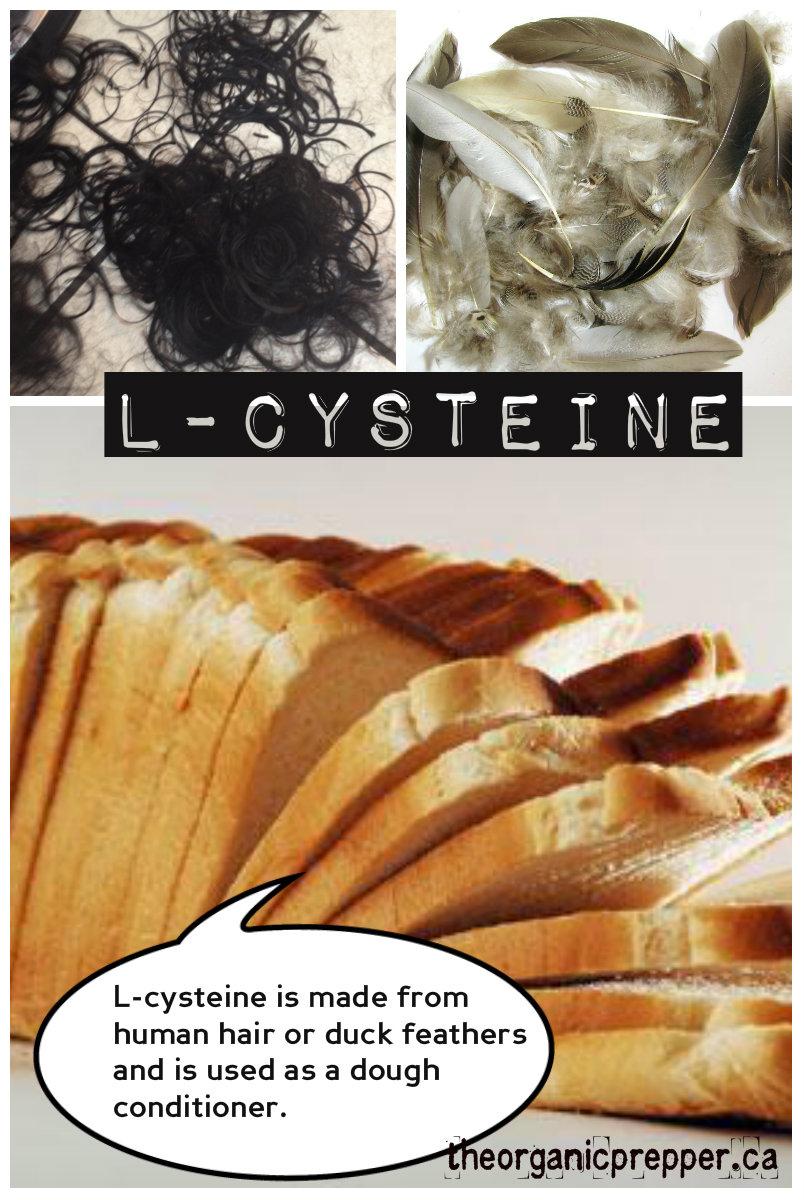 l-cyesteine 1